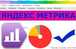 Яндекс метрика. Полезные функции